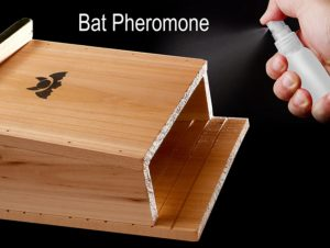 Bat House & Bat Attractant Spray