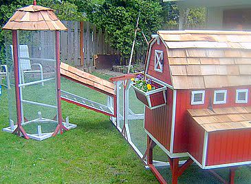 Custome Chicken Coop 02