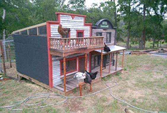 Western Themed Chicekn coops